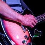 Blues Party 2014 @ Žablji Salaš