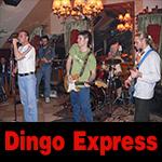 Dingo Express