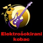 Elektrosokirani kobac