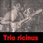 Trio ricinus