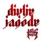 Divlje Jagode – uskoro dvanaesti album