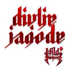 divlje-jagode-2013-250