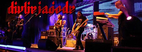 divlje-jagode-2013-600
